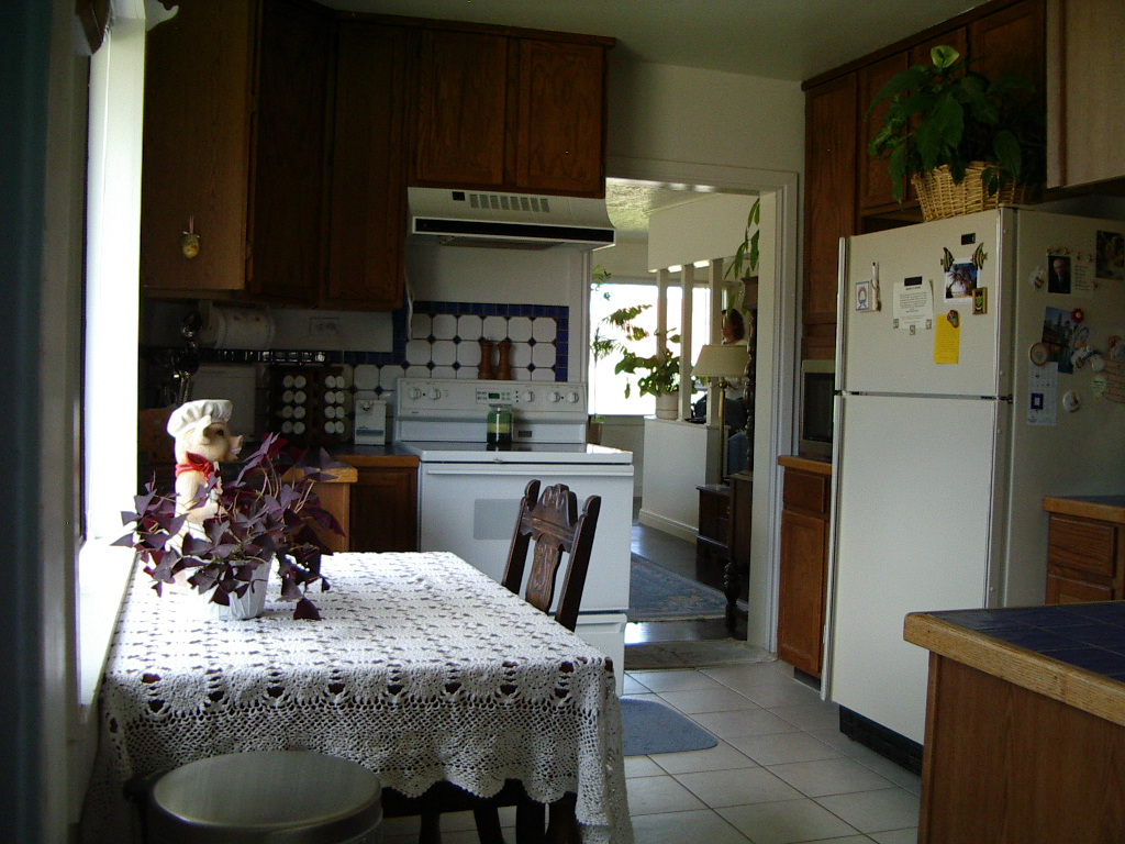 Before Bungalow Kitchen Remodel