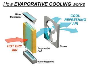 Swamp Cooler is an inexpensive way to beat the heat