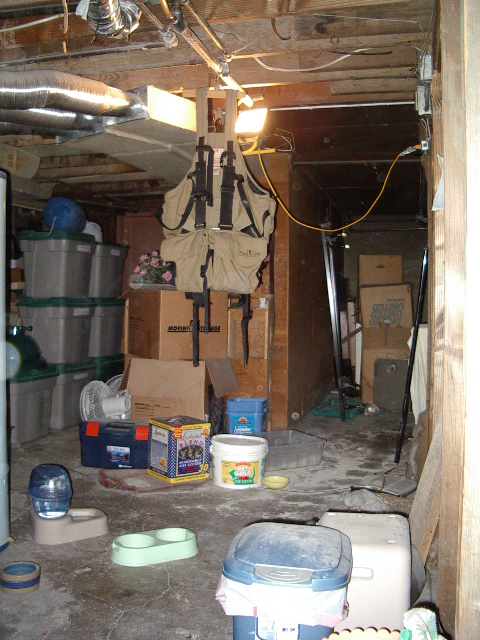 Before Basement remodel