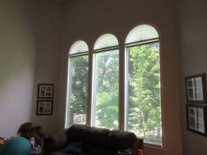 Before Living Room remodel and window replacement | Renovation Design Group