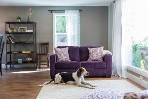 Great Room remodel Cottage   Renovation Deisgn group