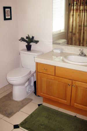 Renovation Solutions Levels Of Options For Remodeling Master - Carlos bathroom renovations