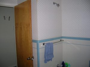 Before Ranch Bathroom | Renovation Design Group