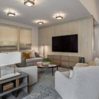Family room, modern furniture, great room