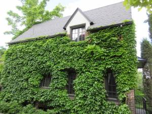 Tudor Style home example
