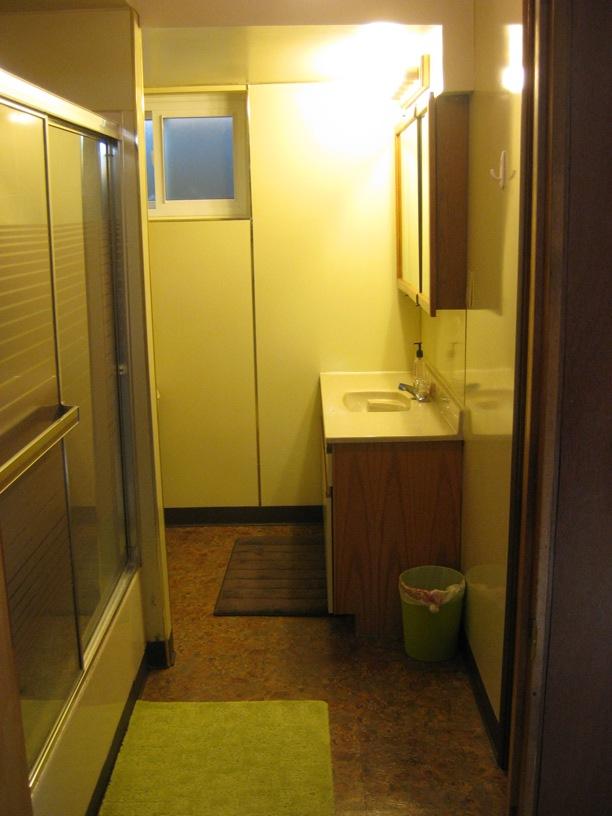 Before Bathroom basement remodel | Renovation Design Group