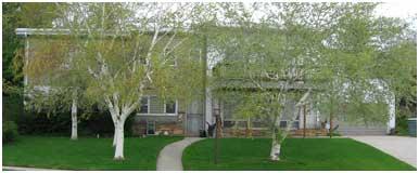 Split-Level Home before Exterior Remodel | Renovation Design Group